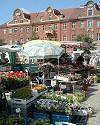 """Markttag auf dem Bassinplatz, im Hintergrund Häuser """"Am Bassin"""""""